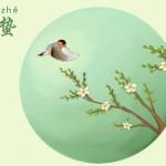 中国の養生学 三月の養生~この時期は「遅寝早起」を!