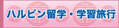 株中国語教室学楽 ハルピン留学・学習旅行
